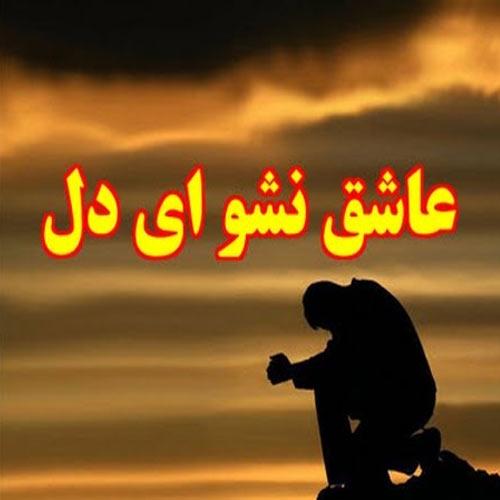 دانلود آهنگ دل بی صاحبم عاشق نشو مصطفی ابراهیمی