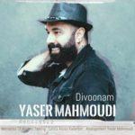 دانلود آهنگ یاسر محمودی دیوونم